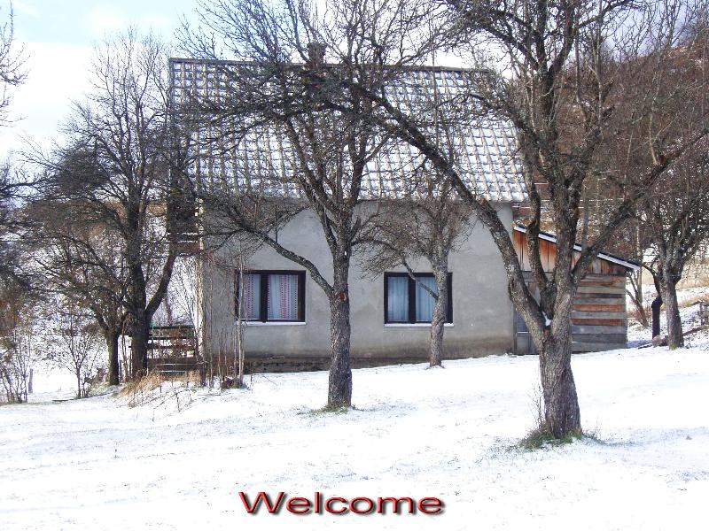 Wintertime - Country House in a Plum Orchard by Kolasin River - Kolasin - rentals