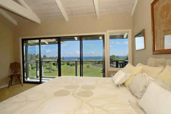 Rainforest Suite - Welcome To Peace And Tranquility - Pahoa - rentals