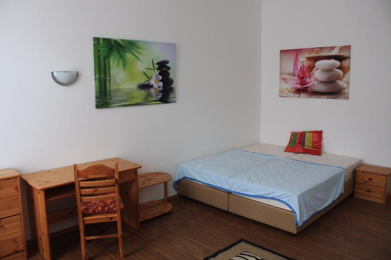 sleep or work - Apartment near LUGNER CITY - Vienna - rentals