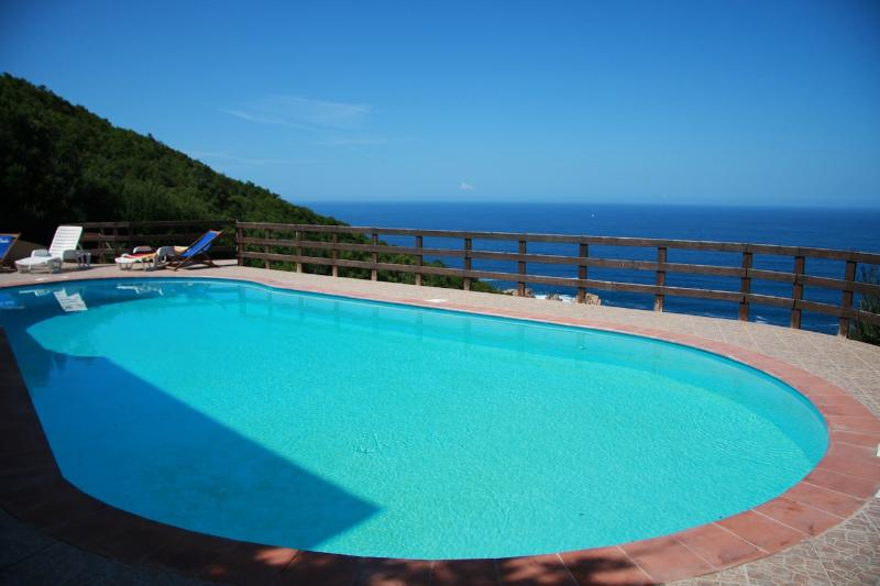 Villa with swimming pool and sea view - Costa Paradiso - Image 1 - Costa Paradiso - rentals