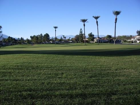 View From Our Patio - Fabulous Updated Golf Course Desert Resort Condo - Palm Desert - rentals