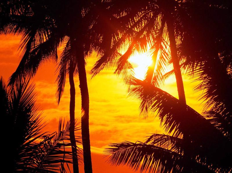 "Wailea Sunset - ""Best Vacation Ever"" Say Our Guests! - Wailea - rentals"