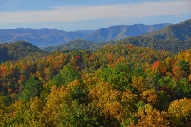 Peak Fall spectacular view from the cabin's balcony - GREAT Wears Valley VIEWS! Private! KING beds, Wifi - Wears Valley - rentals