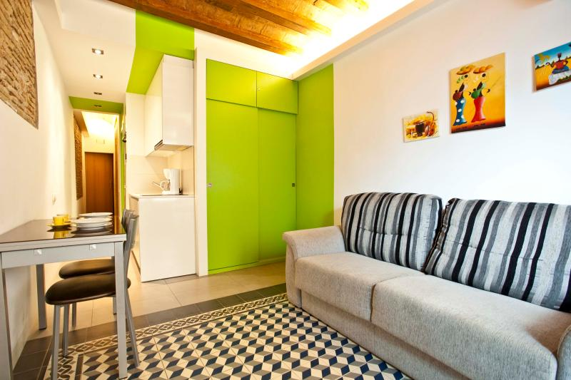 Main living space - Remodeled studio for 2, Gothic Quarter & El Born - Barcelona - rentals