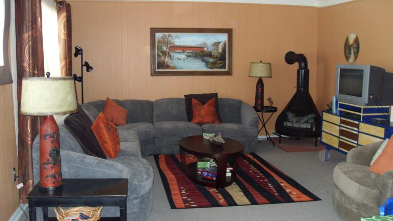 Relax, get comfortable and make your at home. - Chautauqua Lake area cottage.... - Mayville - rentals