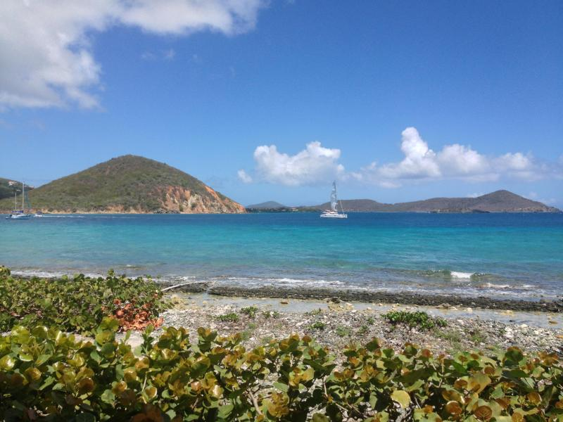 View from Patio - Oceanfront with amazing views! - Saint Thomas - rentals