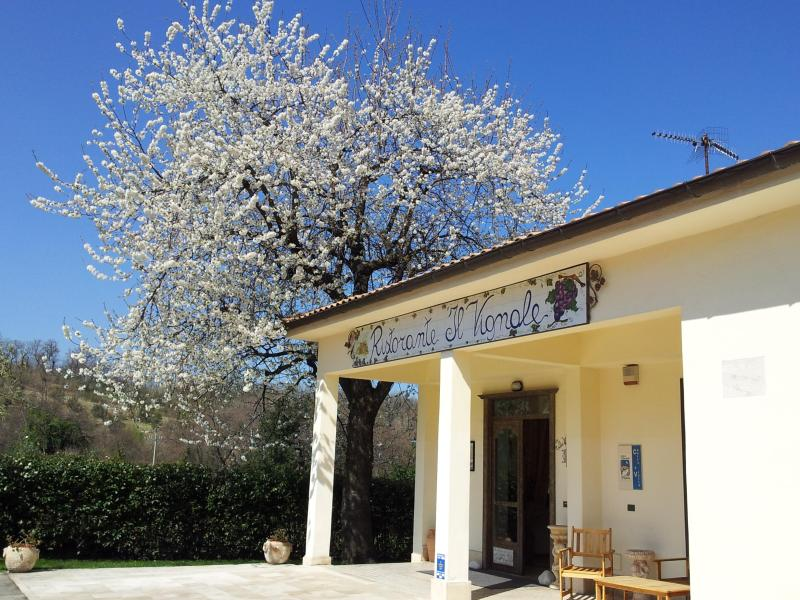 Beautiful and confortable cottage in the country! - Image 1 - Chieti - rentals