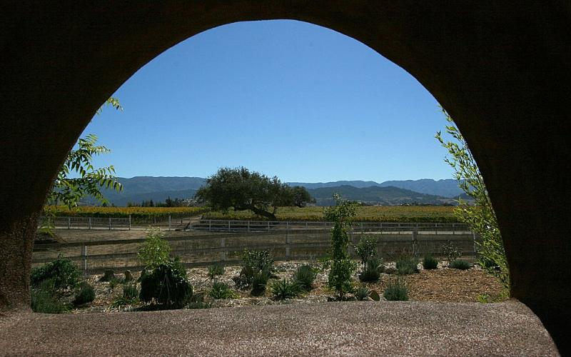 View from outdoor kitchen - Organic Garden & Wine Country Oasis - Solvang - rentals