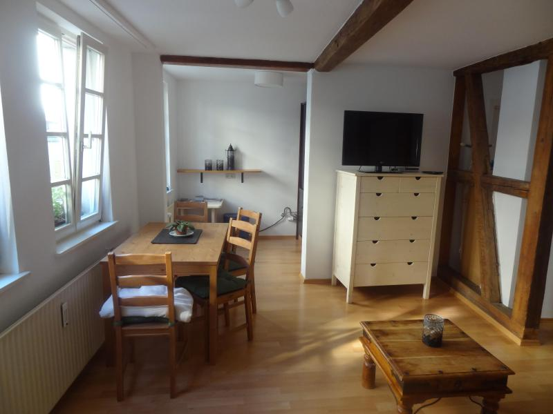 Private Apartment-close to city-free wifi, kitchen - Image 1 - Frankfurt - rentals