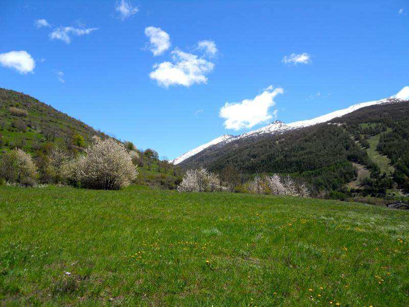 Wild mountains 15 meters from the apartment - LOVELY AND COSY APARTMENT IN THE ALPS - ITALY - Bardonecchia - rentals