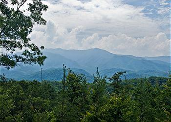 Spectacular View from Mountain Safari - Mountain Safari -2 Bedroom Chalet - Gatlinburg - rentals