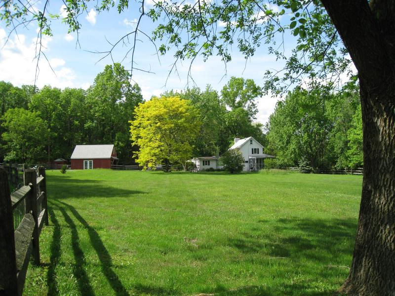 3 Acres of fenced in property - Renovated Farm House  with Pool & 2 Fireplaces - Upper Black Eddy - rentals
