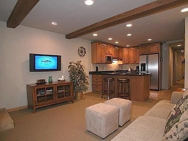 Beautiful Condo in the heart of Aspen - Image 1 - Aspen - rentals