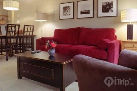 Lovely bright living room. Sofa converts to double bed - Beautiful 2 Bed , 2 Bath top floor condo in Deer Lodge Unit #443 - Whistler - rentals