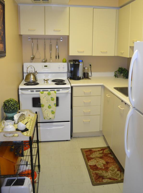 Kitchen - Quiet, Cozy and Bright 1 bedroom apt in the GTA (Toronto, Canada) - Scarborough - rentals