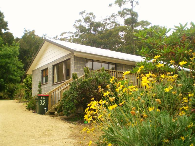 From Andersons Road - Port Arthur Cottage OCEAN VIEW - Port Arthur - rentals