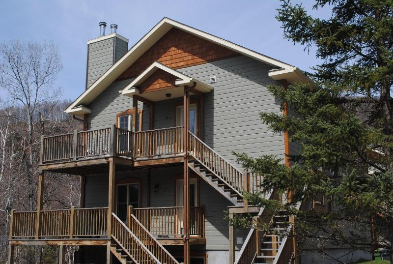 Awesome large chalet right in the heart of the Old Mont Tremblant Village (5 minutes from the mountain). - Image 1 - Mont Tremblant - rentals