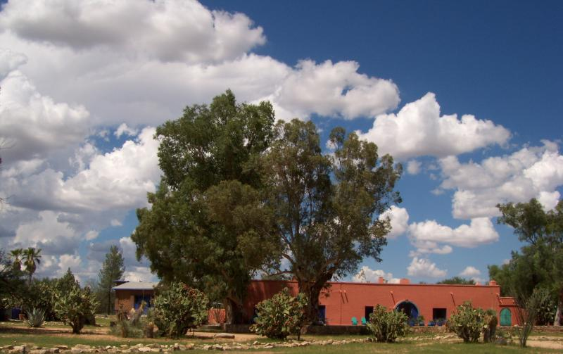 Hacienda - Historic Southern Arizona Ranch - Sasabe - rentals