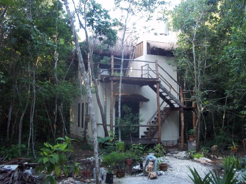 Main entrance with organic garden - Treetop Palapa in the Jungle - Quintana Roo - rentals
