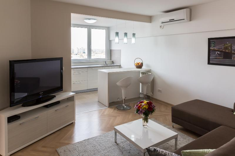 Wonderful Apartment in the Heart of Belgrade - Image 1 - Belgrade - rentals