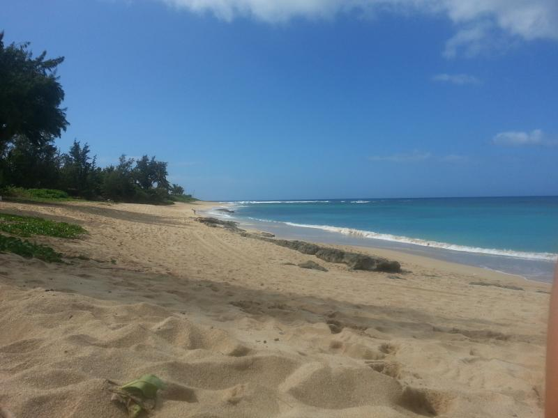 Our beach viewing to the left towards Sunset - Vland Homestay North Shore Oahu - Haleiwa - rentals