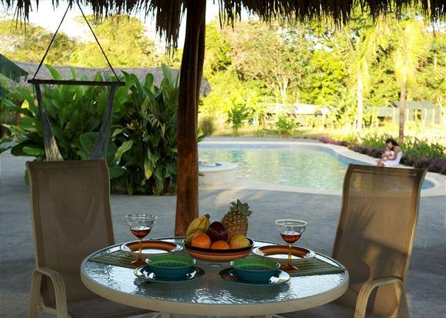 Patio Area - QUALITY AFFORDABLE LUXURY CONDO 10 MINUTES AWAY FROM BEACH - Tamarindo - rentals