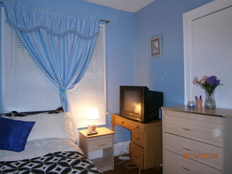 TV - Spacious unit for 3 adults and 1 child - Toronto - rentals