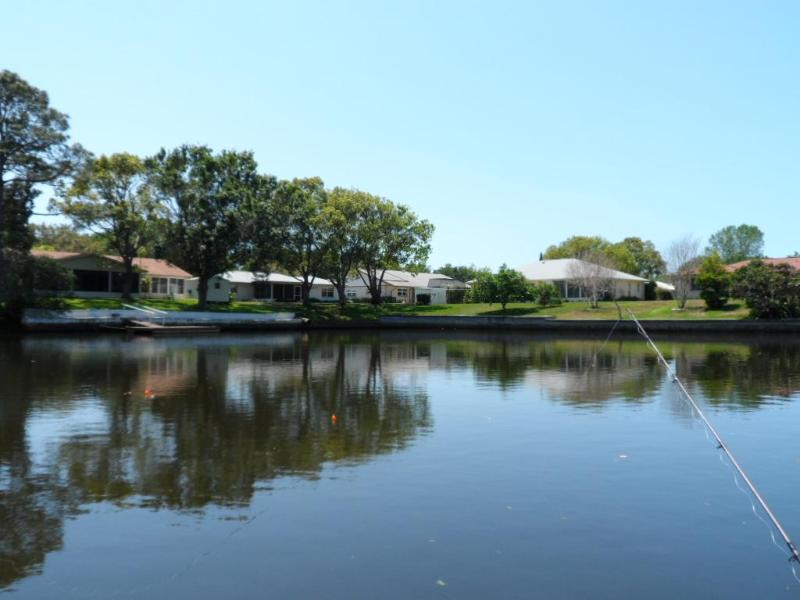 A view from our dock! - Waterfront Paradise ~ Dolphins & Manatees @ dock! - Holiday - rentals