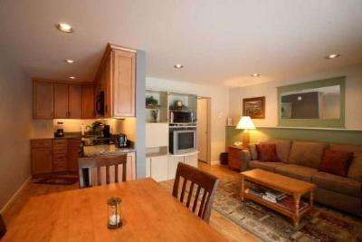 Nice, open floor plan - It`s Summer... Treat yourself! 1 BR Luxury Condo at Topnotch Resort & Spa, 100yds from Spa - Stowe - rentals