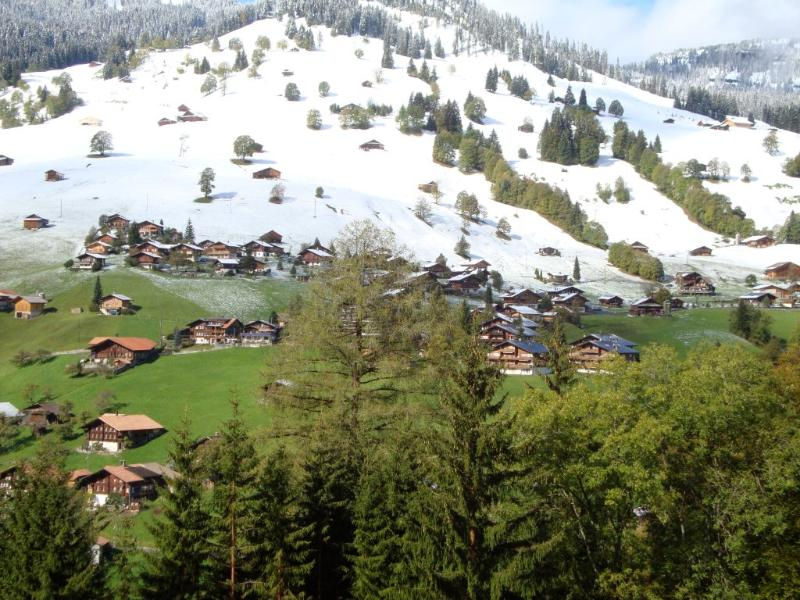 View  - Holiday Apartment in Chalet Habkern ob Interlaken - Habkern - rentals