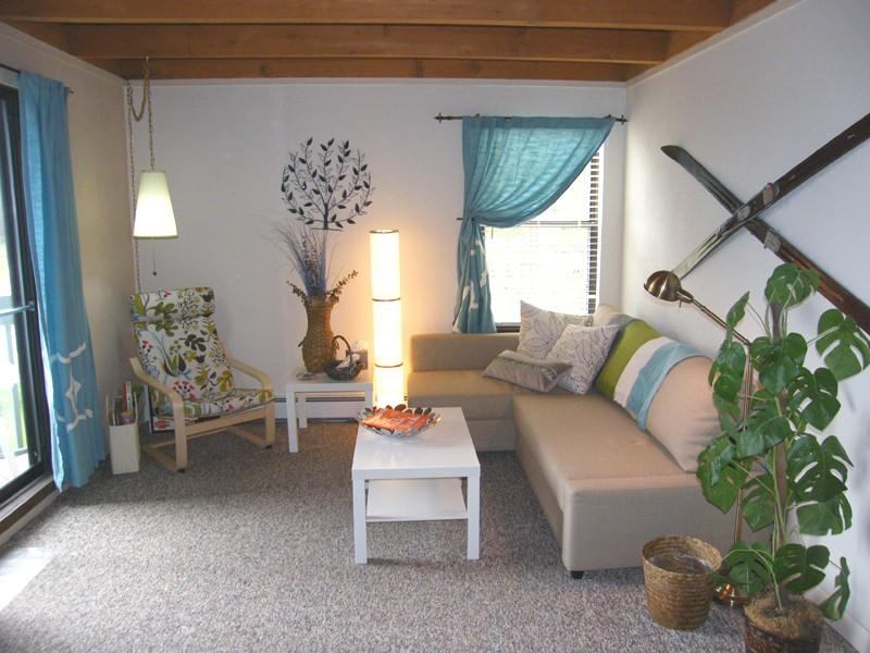 Bright living room with comfortable pull-out sofa - Condo with WIFI, Fireplace, and Amazing Clubhouse - Silverthorne - rentals