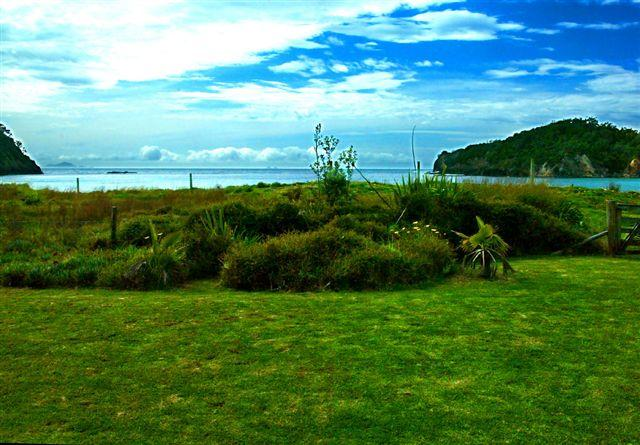 Absolute Beach front at Matapouri Beach - outlook from house - Matapouri Beachfront - Absolute Waterfront! - Northland - rentals