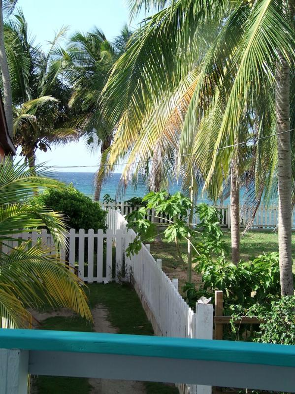 View - Bodhi Playa Purple AS SEEN ON HGTV CARIBBEAN LIFE - Vieques - rentals