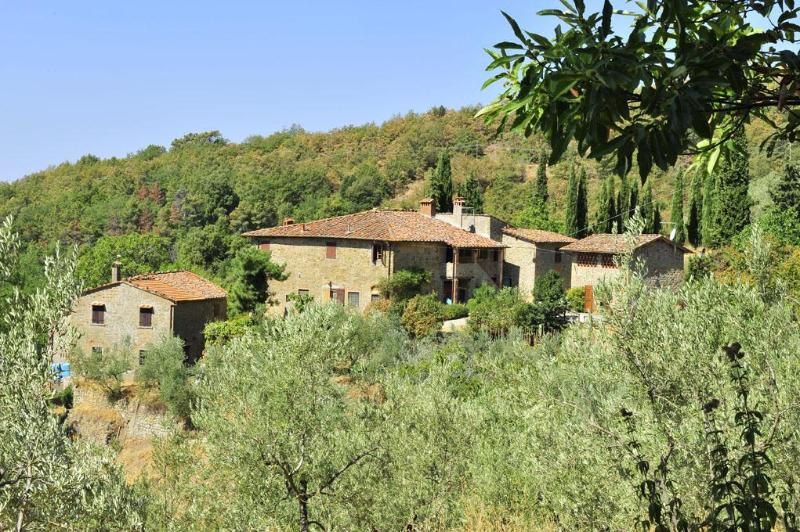 Farmhouse with pvt pool, terraces, stunning view - Image 1 - Loro Ciuffenna - rentals