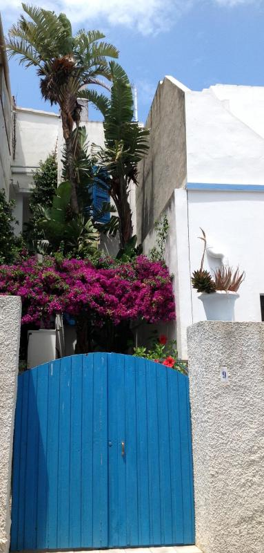 The entrance from the garden - Cà de Anna, a typical Tabarkinis'  fishermen house - Calasetta - rentals