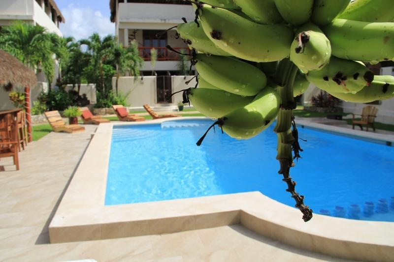 Our Pool and Common Area - Secure Luxury Villa Town Home in Tulum - Pool & AC - Tulum - rentals
