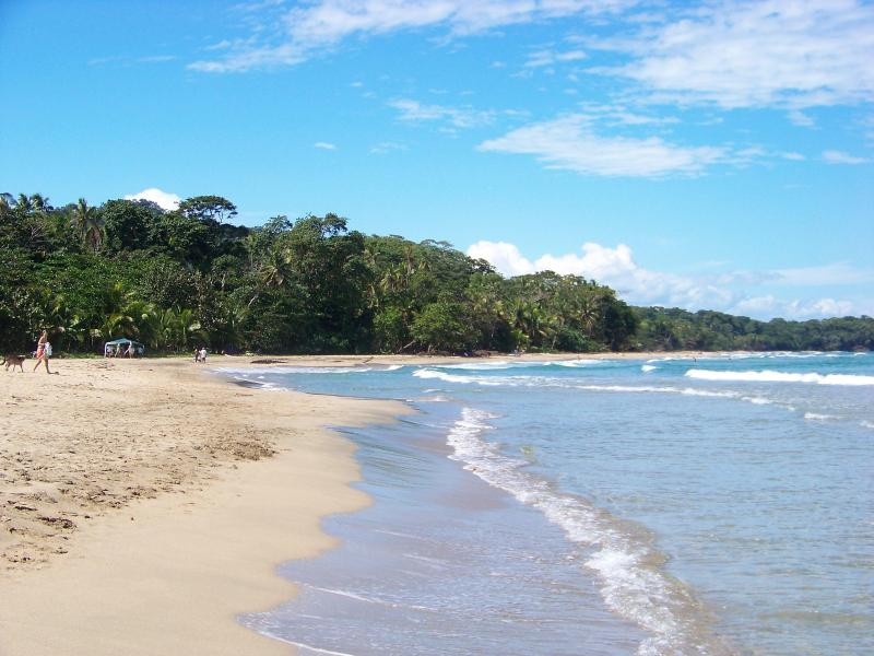 150 meters from our front door, the gorgeous beaches of Playa Cocles - Pool, beach, private jungle bungalow @ Caribe Town - Puerto Viejo de Talamanca - rentals