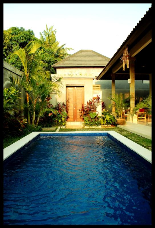 private pool - d'Umahayu Villa, 2 bedrooms villa for rent in Bali - Seminyak - rentals
