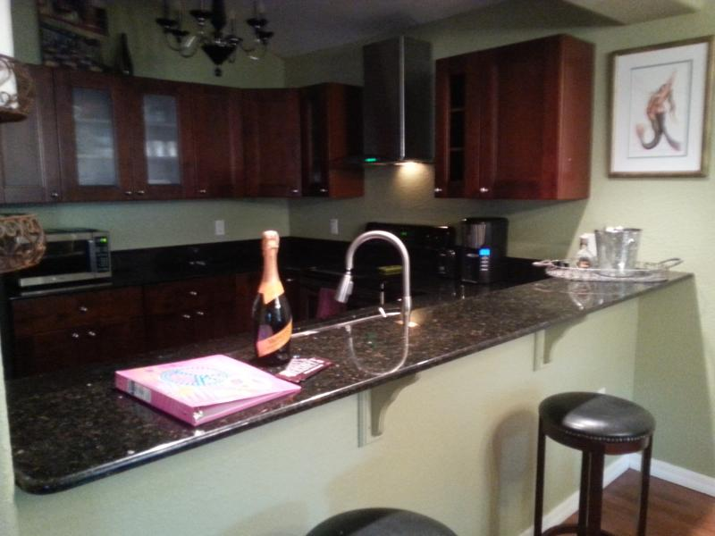Kitchen with high bar - Modern 1 bedroom 5 mi from Clearwater Beach - Clearwater - rentals