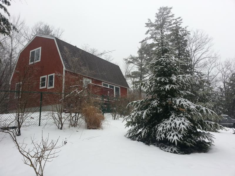 unique experience - Winter in New Hampshire on a pond with cozy comforts - New Durham - rentals
