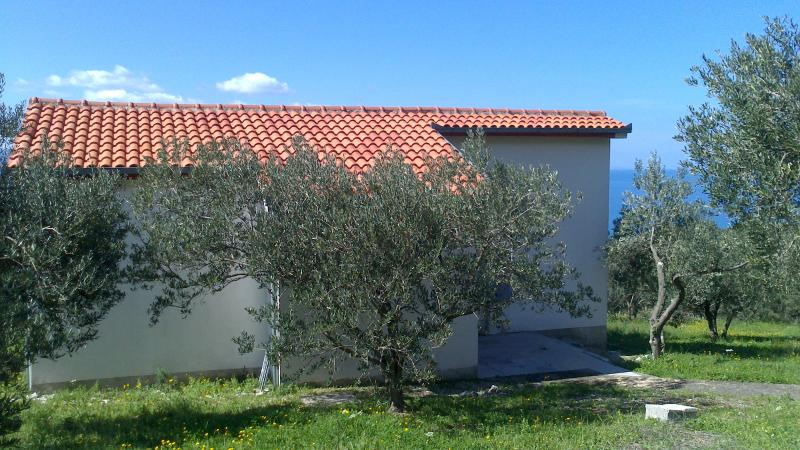 Villa Oliveta (back side) - Villa Oliveta seaview & great sport possibility - Brela - rentals