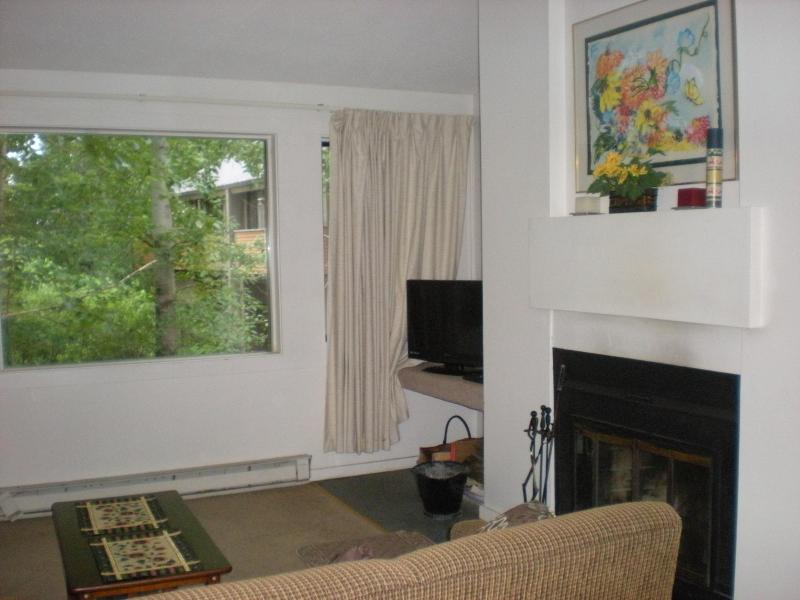 Awesome Loon Mtn Condo- Beautiful for Fall Trip! - Image 1 - Lincoln - rentals