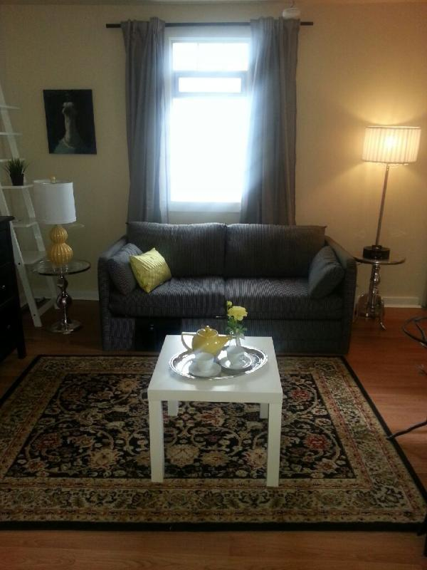 Studio Living (sofa bed) - Bella's Cottage in Vancouver 20 min From Downtown! - Vancouver - rentals