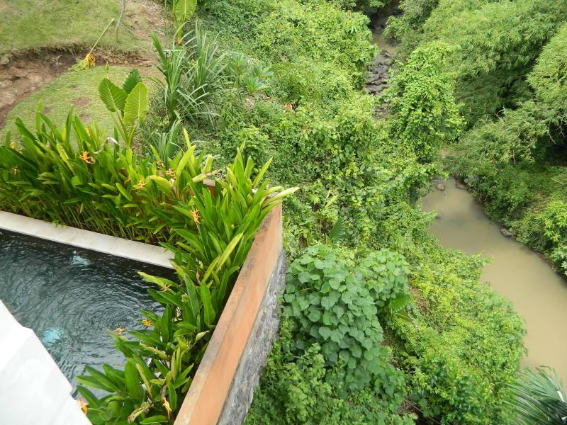 river and forestview from upperbalcony - Villa Indah - if you want total peace and luxury. - Bali - rentals