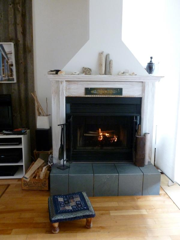 Warm and bright home in Montreal - Image 1 - Montreal - rentals