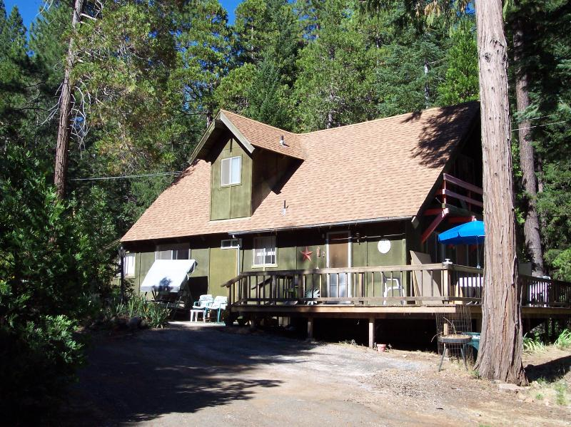 Nestled in the woods - Cabin Getaway - Nevada City - rentals