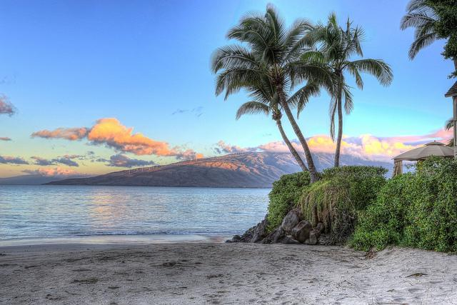 Kalepolepo Beach Park is less than 300 footsteps from your front door!  Rated 4.5 out of 5 Stars!!!! - Tracy's Tropical Treasure #2: <300 Steps 2 Ocn/Bch - Kihei - rentals