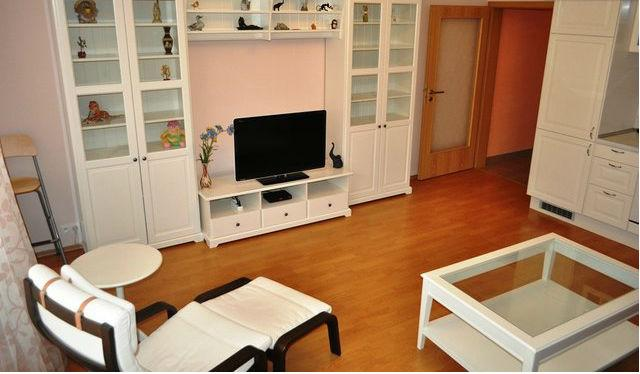 Gorgeous apartment near the lake - Image 1 - Czech Republic - rentals