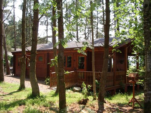 Side of chalet with parking area. Ramp access and 1/3 acre private, enclosed wooded area - CLOUD CUCKOO LODGE  secluded dark skies cabin. - Castle Douglas - rentals