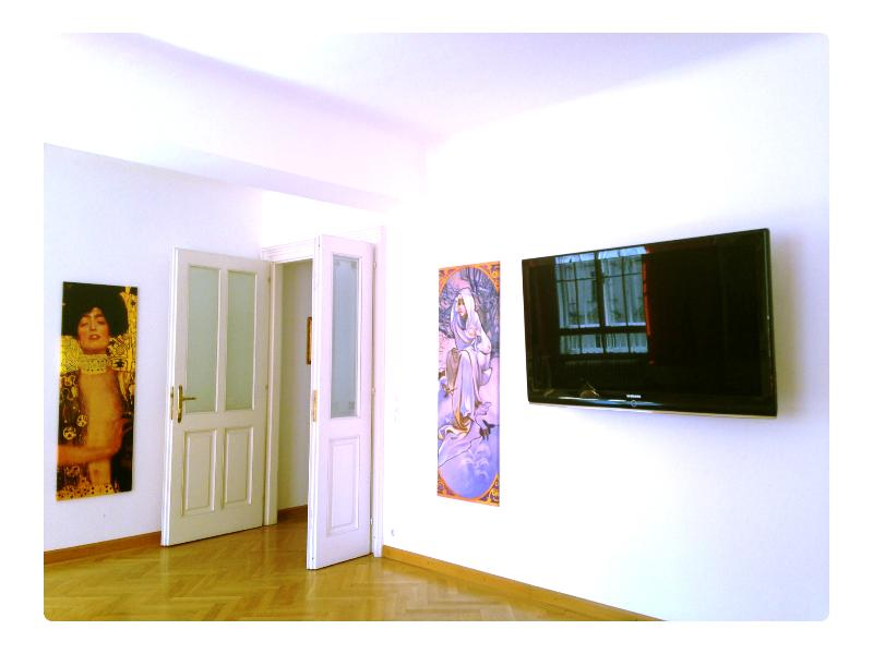 the living room with the 52 inch Samsung LED - Most exclusive central city area - Vienna - rentals